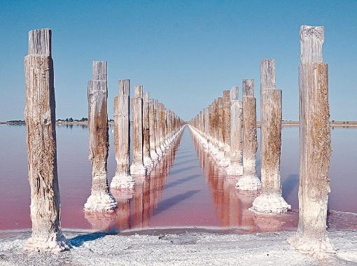 мертвое розовое озеро